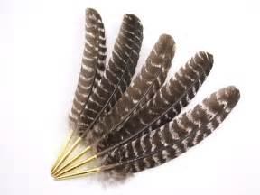 ostrich feather fans feather pens bronze turkey feather ballpoint