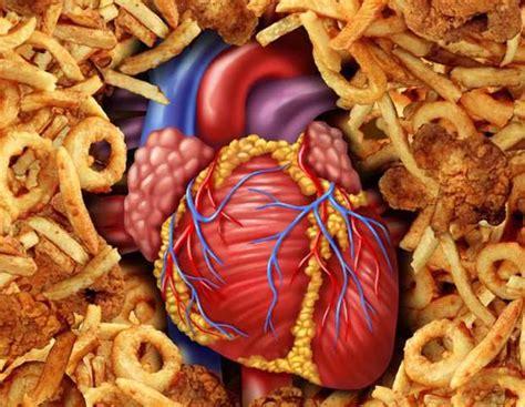 food ingredients   killing  fitness viking