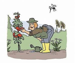 Mücken Im Haus Was Tun : was tun wenn die m cken ausschw rmen ~ Markanthonyermac.com Haus und Dekorationen