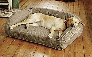 top 15 best dog beds for large dogs reviews in 2017 With best place to buy dog beds