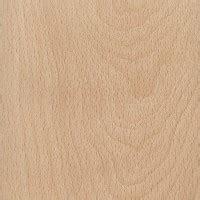 american beech  wood  lumber identification