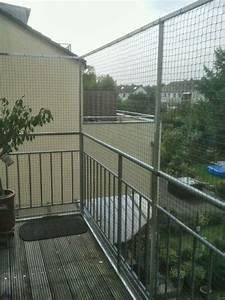 Katzennetz Balkon Unsichtbar : katzennetz nrw die adresse f r ein katzennetz september 2013 ~ Orissabook.com Haus und Dekorationen