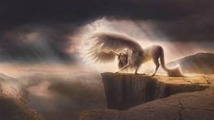 Wallpaper Pegasus Horse HD 5K Creative Graphics 5877