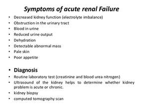 Acute Renal Kidney Failure Signs and Symptoms