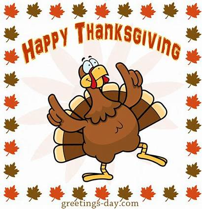 Thanksgiving Turkey Animated Cartoon