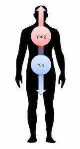 Bedeutung Yin Und Yang : das entsprechungs und zuordnungssystem der 5 eelemente ~ Frokenaadalensverden.com Haus und Dekorationen