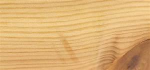 Unterschied Kiefer Fichte Holz : holzarten kiefer f hre proholz austria ~ Markanthonyermac.com Haus und Dekorationen