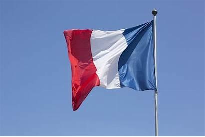 Flag France French Citizenship Wind Algerian Paris