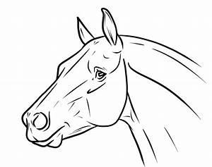 Pin Horse Drawings For Kids Cake on Pinterest