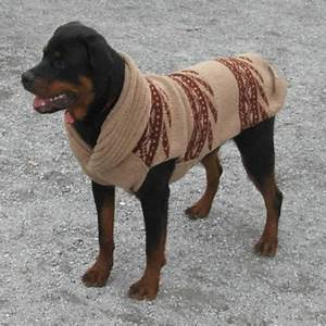 search q=Sweaters for Dogs Dog&FORM=RESTAB