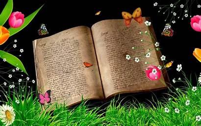 Magical Background Wallpapers Butterflies Magic Flower Butterfly