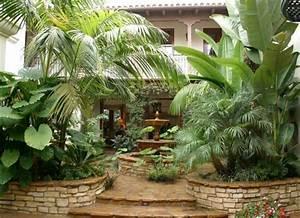 petit jardin avec palmier strasbourg maison design With amenagement petit jardin avec piscine 9 album olivier et palmier arbor mineral paysagiste