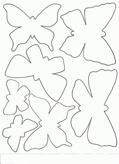Template Butterfly Blank Butterflies Mask Coloring Pages