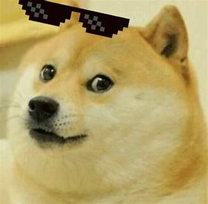 Doge Deal With It GIF - Doge DealWithIt TooBad - Discover ...