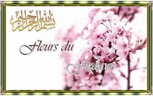Fleur D Islam Horaire Priere : fleurs islam ~ Medecine-chirurgie-esthetiques.com Avis de Voitures