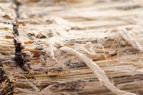 sicher arbeiten mit asbest die sicherheitsvorschriften