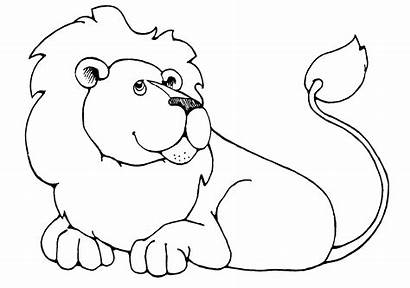 Lion Outline Clipart Clip Drawing Cliparts Line