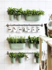 kitchen herb garden ideas indoor herb garden with fintorp rail and hooks