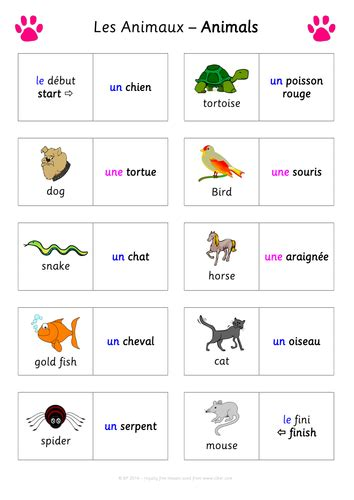 fun french dominoes game les animaux animals pets for
