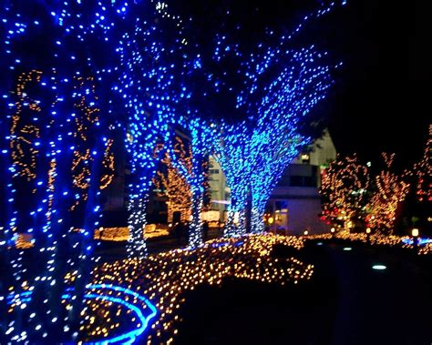 Lights Outdoor Wallpaper by Attractive Epiphany In 2014 Epiphany Images Collections
