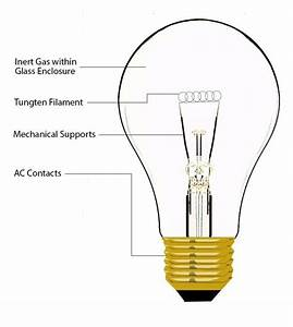 If I Have Ac Circuit Of Lamp Which The Neutral Wire Is Disconnected From The Lamp  Will I Get