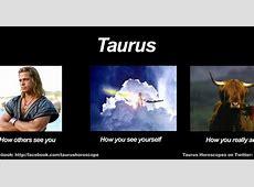 Funny Taurus Meme Zodiac Memes Pinterest Funny, Lol