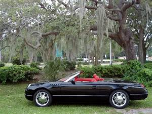 1999 Ford Thunderbird Concept Roadster