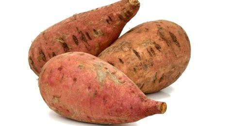 aménagement cuisine d été patate douce plantation entretien et récolte