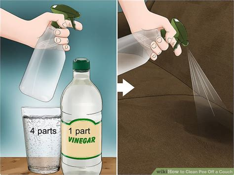 3 Ways To Clean Pee Off A Couch