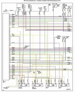 Quattroworld Com Forums  Climate Control Wiring Diagram 1