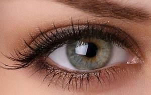 Yeux Verts Rares : maquillage vos yeux et leurs couleurs bienvenue sur ~ Nature-et-papiers.com Idées de Décoration