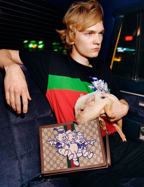 pigs gucci collection coming