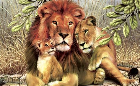 25+ Lion Wallpapers, Backgrounds, Images, Pictures ...