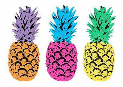 Colorful Pineapples Illustrated Background Publicdomainpictures