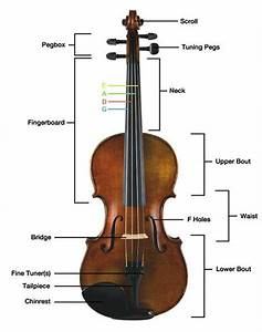 39 Best Images About Parts Of The Violin On Pinterest