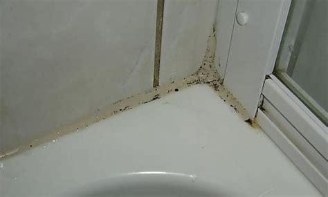 feuchte fugen im bad hochwertige baustoffe duschkabine silikon erneuern