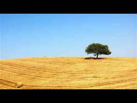 Encontra casas e apartamentos baratos no idealista. Meteorologia. Seca terminou em dezembro em Portugal ...