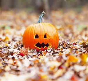Tips, For, Keeping, Carved, Pumpkins, Fresh