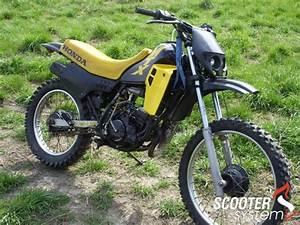 Moto Honda Automatique : honda mtx 50 jailbreaker ~ Medecine-chirurgie-esthetiques.com Avis de Voitures
