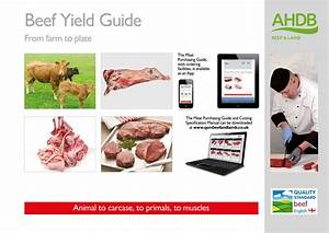 Beef Yield Guide By Ahdb1