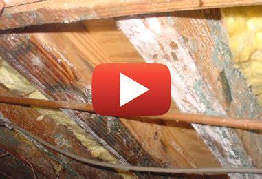 enlever humidité chambre élimination de moisissure dans les chambres froides