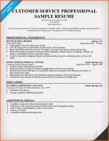 resume exles professional services 6 professional resume sles budget template letter