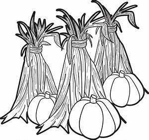 Pumpkins and Corn Stalks Coloring Page | Corn stalks ...