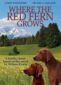 Where the Red Fern Grows DVD | Vision Video | Christian ...