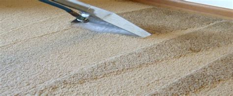 Carpet Cleaners Carpet Cleansing Essentials Carpeting Cleaning Is An Essential Industry