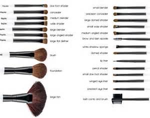 purpose of each makeup brush karity