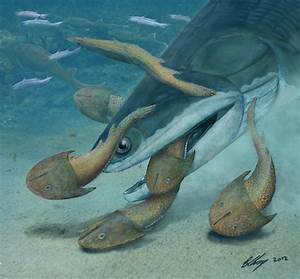 Researchers unearth largest Silurian vertebrate to date ...  Silurian