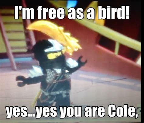 Cole Meme - 17 best images about ninjago cole on pinterest love him flies away and lego