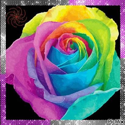 Rainbow Flower Picmix