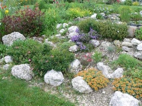 giardino roccioso progetto giardini rocciosi fai da te progettazione giardini